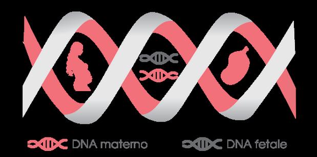 DNA_materno_DNA_fetale_17keame6